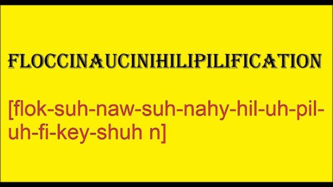 Floccinaucinihilipilification
