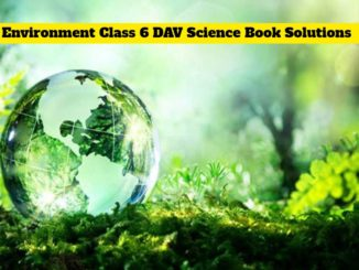 dav science book class 6 solutions