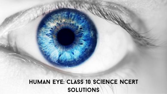 Human Eye Class 10 NCERT Solutions