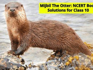 Mijbil The Otter NCERT Solutions
